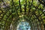 Sanssouci Garden