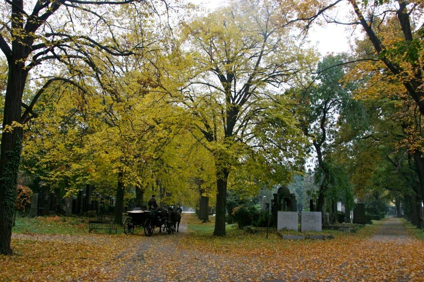Zentralfriedhof, Central Cemetery, Vienna, Austria, Fall