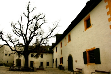 Hohensalzburg Castle Square, Salzburg, Austria, Fall, Tree