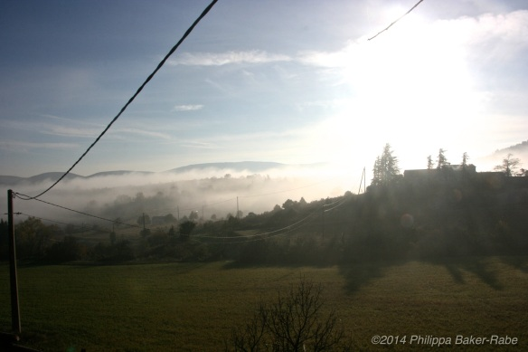 Mist over Lagorce Olive Oil Farm France